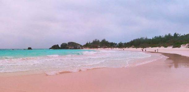 Bãi biển vịnh Horseshoe – Bermuda