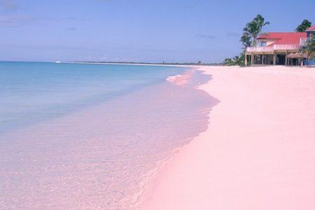 Bãi biển Bonaire – Dutch, Caribbean